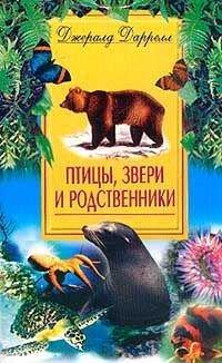 Птицы, звери и родственники — Даррелл Джеральд