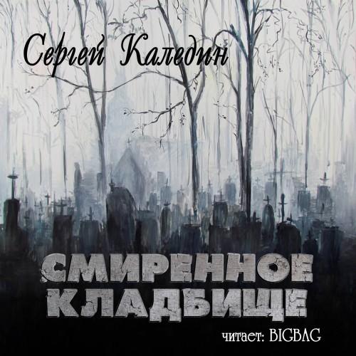 Смиренное кладбище — Каледин Сергей