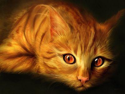 Золотая кошка — Тарасава Юстасия