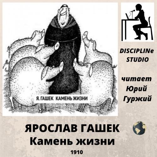 Камень жизни — Гашек Ярослав