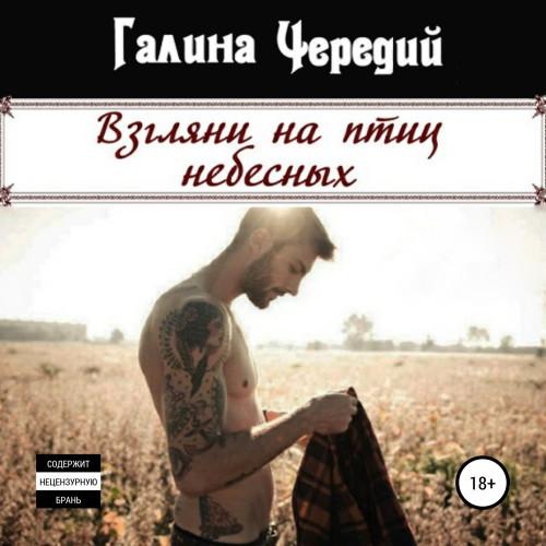 Просто о любви 3, Взгляни на птиц небесных — Чередий Галина